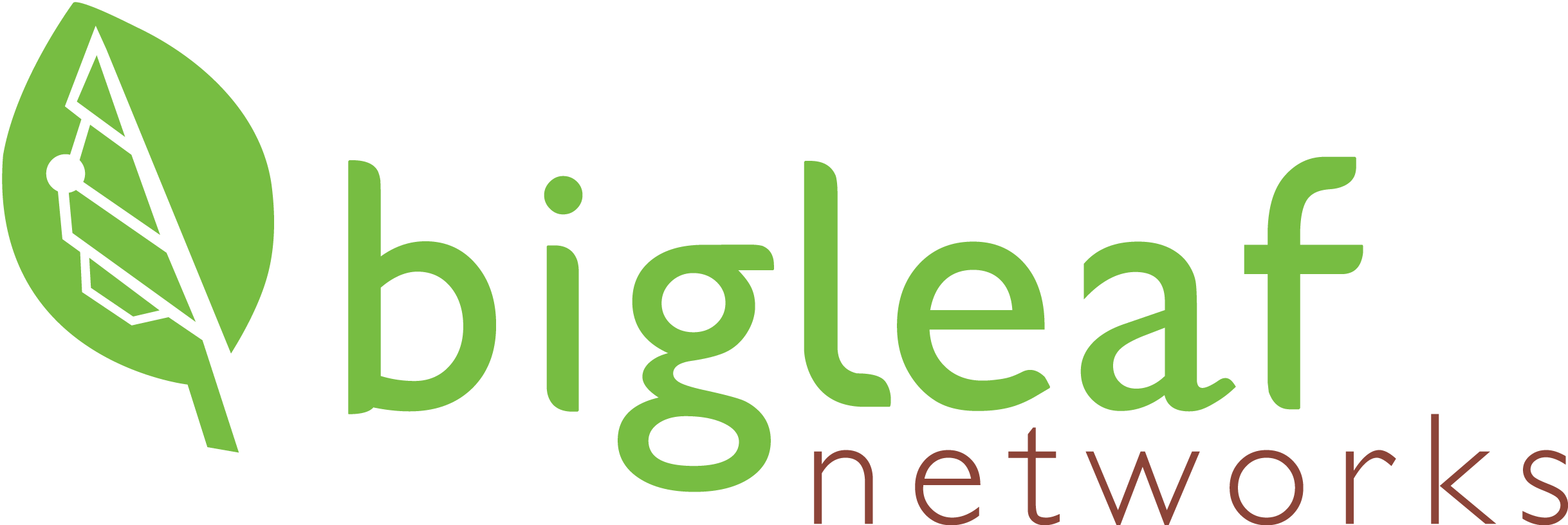 Bigleaf Logo LARGE