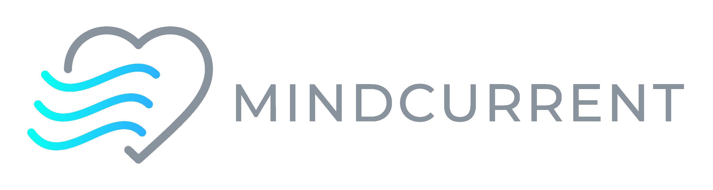 Mindcurrent Logo Gray Horizontal