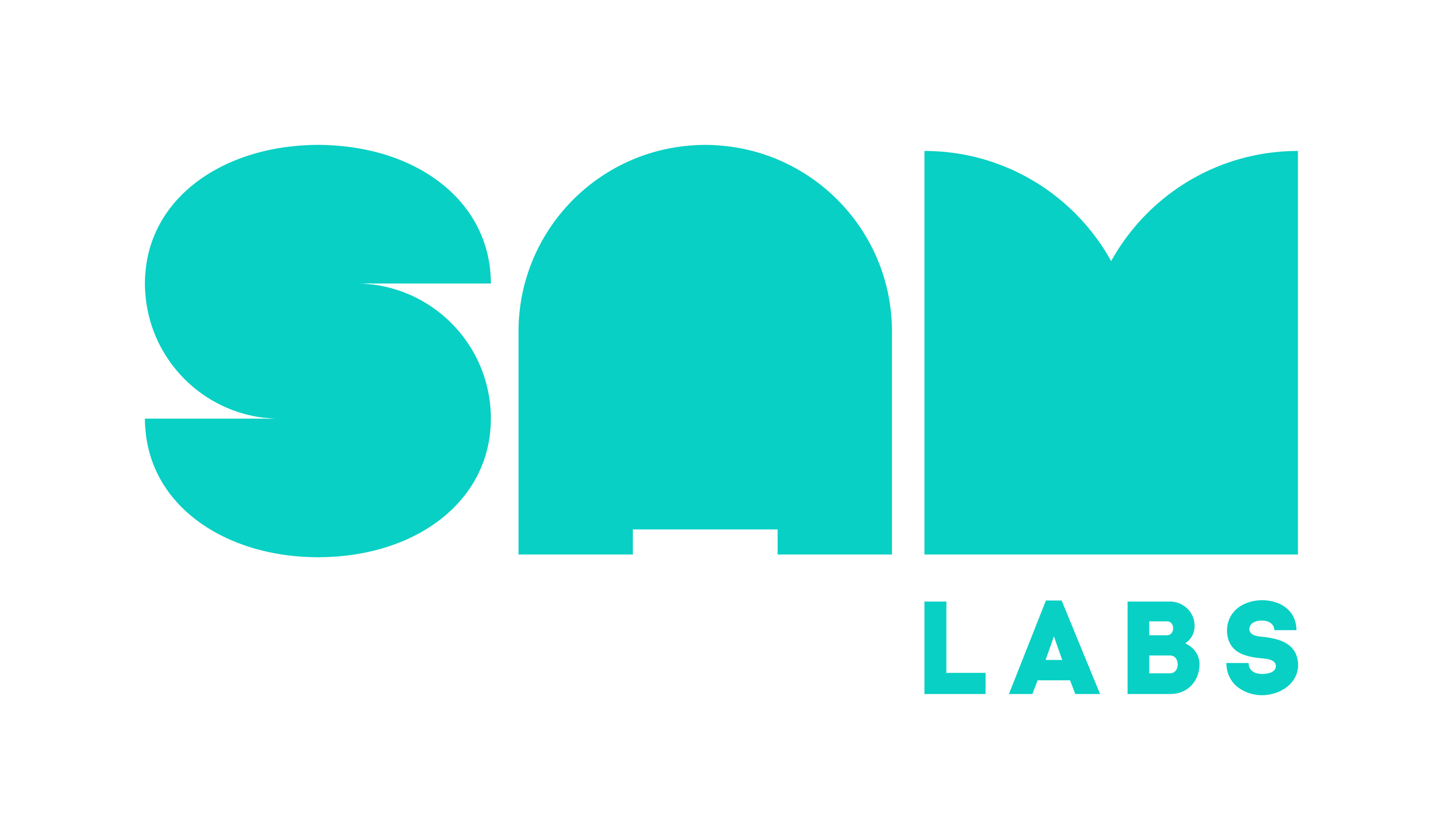 SAMLabs Main Logo Colour RGB SM